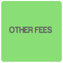 other-fees
